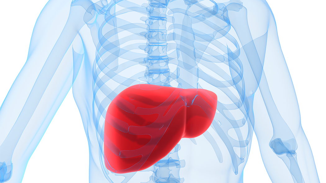 GP (HK) Acquires Shenming Medical Technology Co., Ltd. Obtains All Rights of an Innovative Thermosensitive Embolic Agent for the Treatment of Liver Cancer. Further Expands the Tumor Intervention Treatment Product Pipeline